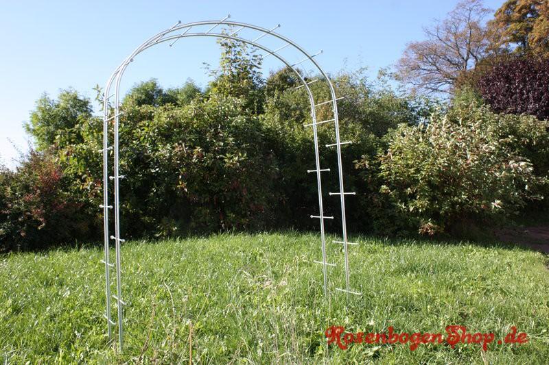 Rosenbogen HORTUS Standard 160cm